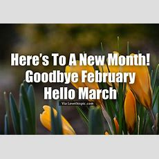 Here's To A New Month! Goodbye February, Hello March Pictures, Photos, And Images For Facebook
