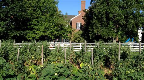 shaker gardens peace calm and good eats at shaker village louisvillehotbytes com
