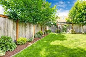 Schnell Wachsende Laubbäume Für Den Garten : b ume f r den garten tipps ideen f r gro e und kleine ~ Michelbontemps.com Haus und Dekorationen