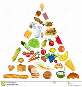 Food Pyramid Stock Image  Image Of Cereal  Fish  Guide