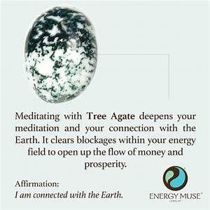 Tree Agate Stone, Discover the Tree Agate Meaning from ...