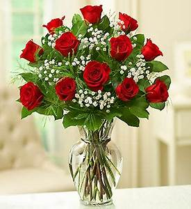Giveaway: Win the 1 Dozen Roses Red Rose Elegance Premium ...