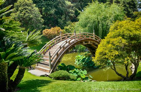 The Huntington Botanical Gardens by Five Of The World S Most Beautiful Gardens
