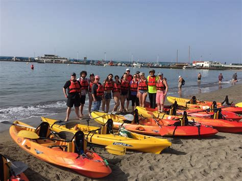 siege areas assurances kayaking with dolphins snorkelling safari 2 great