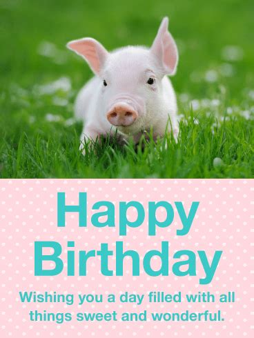 precious pig happy birthday card birthday greeting