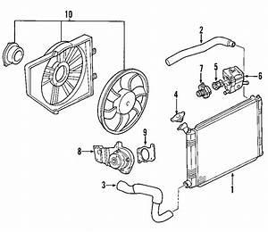 Ford Focus Radiator Coolant Hose  2 0 Liter  Sohc Engine