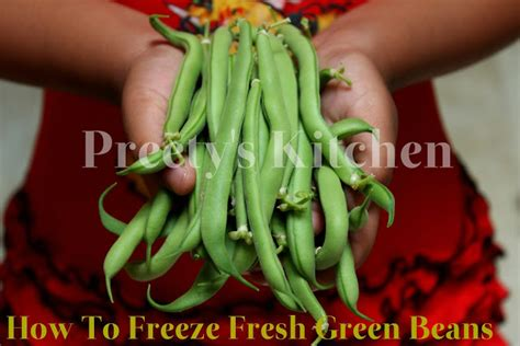 freezing fresh green beans preety s kitchen how to freeze fresh green beans step by step pictures
