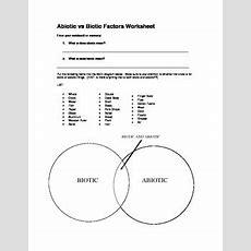 Abiotic Vs Biotic Factors By Mrs Kalers Science Stop Tpt