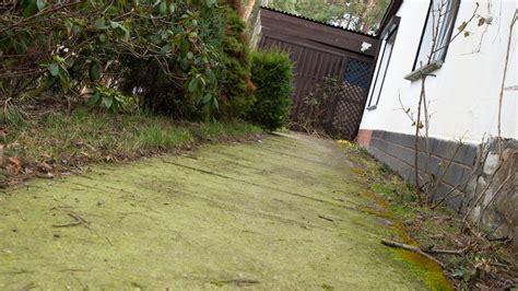 Algen Und Moos Entfernen Auf Terrasse Und Wegen by Moos Steinen Entfernen Moos Entfernen Moos Entfernen