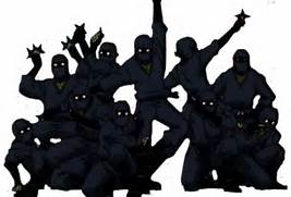 Real Ninjas Fighting Were there real ninjas once