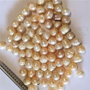 Shell Online Shop : natural oyster reviews online shopping natural oyster reviews on oyster shell with pearl ~ Orissabook.com Haus und Dekorationen
