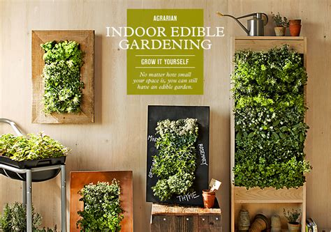 indoor vegetable garden indoor vegetable garden indoor vegetable gardening