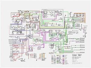 1976 Mgb Wiring Diagram  U2013 Vivresaville Com