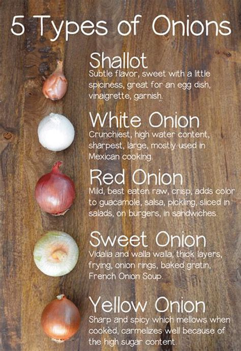 types of onions 50 outstanding benefits of onions for skin hair and health natural home remedies simple and