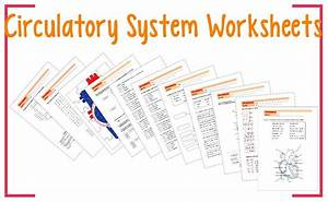 This Product Is A Series Of Worksheets About The