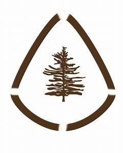 Pine Tree Logo - ClipArt Best