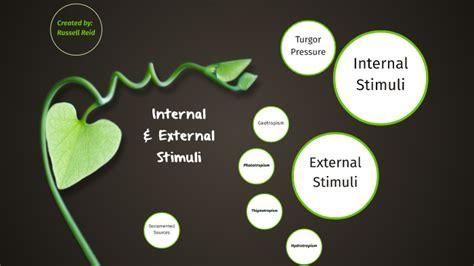Internal External Stimuli by Russell Reid
