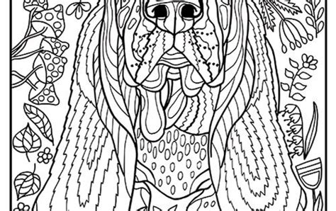printable basset hound coloring page    simple  detailed versions