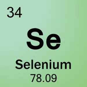 Go Back > Pix For > Selenium Element Selenium