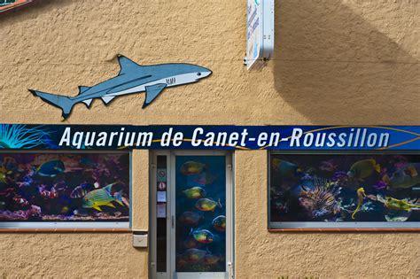 aquarium de canet en roussillon canet en roussillon entdeckenswert das aquarium praktische informationen