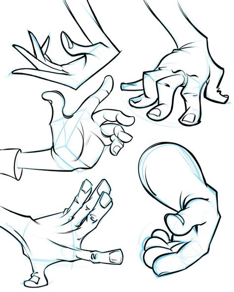 anatomy  artists images  pinterest