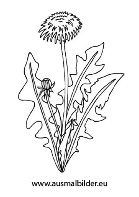 ausmalbild sonnenblume mit blaettern kostenlos ausdrucken