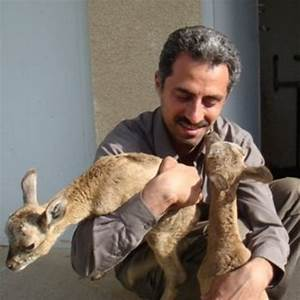 Seyed Mahmoud Ghasempouri | Tarbiat Modares University ...