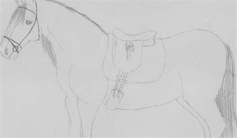 Kleurplaat Paardenhoofden by Tek Tekening Paard Bokt Nl