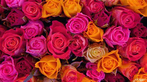 Rose Desktop Wallpaper