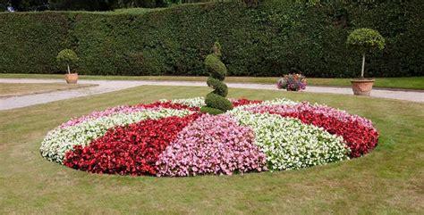 Per scegliere le piante ideali per siepi da giardino, per prima cosa dovrete avere chiara la funzione che andranno a svolgere. Piante da siepi fiorita resistenti al freddo: ecco quali sce