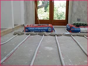 Epaisseur Chape Plancher Chauffant : prix chape liquide au m2 chaton chien donner ~ Melissatoandfro.com Idées de Décoration
