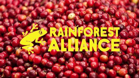 Rainforest Alliance Logo Evolution - YouTube