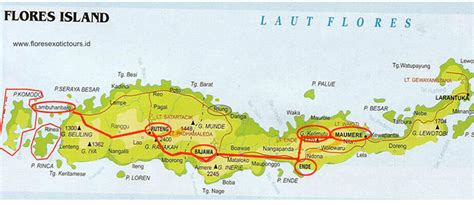 flores indonesia map  flores