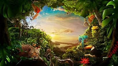 4k Forest Animals Wildlife Wallpapers