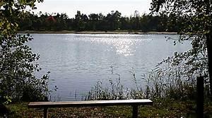 Haus Kaufen In Gronau : mobilheimpark gronau mobilheimpark sch ne h user g rten mobilheimpark dreil ndersee lbs gronau ~ Orissabook.com Haus und Dekorationen