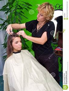 Hair Stylist At Work Stock Image - Image: 16240251
