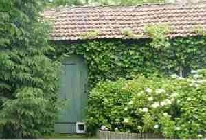 Plantes Grimpantes Mur : vous souhaitez mettre de la verdure ou de la couleur sur ~ Melissatoandfro.com Idées de Décoration