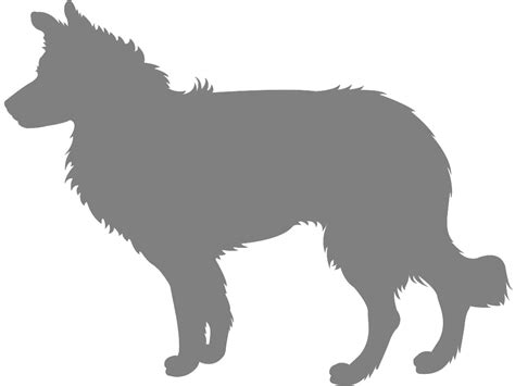 Border Collie Silhouette Free Vector Silhouettes