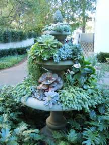 Garden Water Fountain with Succulents