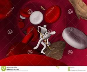 Red  Blood  Cells Inside Vein Stock Illustration