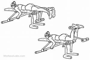 Lying Leg Curls   Illustrated Exercise guide - WorkoutLabs ...