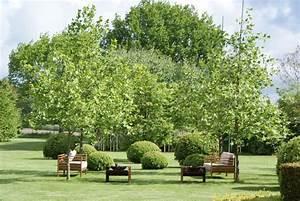 pin gartengestaltung tipps fur grosse landschaft auf With französischer balkon mit gartengestaltung ideen für große gärten