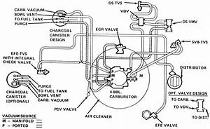 Where Can I Find A Diagram  And Pictures If Possible  For
