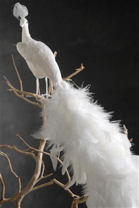 decorative birdcages bird nests  saveoncrafts