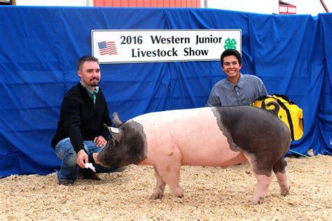 ewc livestock judging show teams place western junior livestock