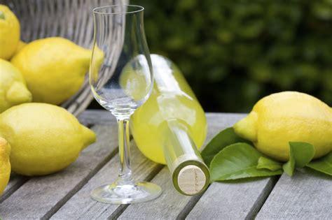 reasons  love limoncello limoncello recipe