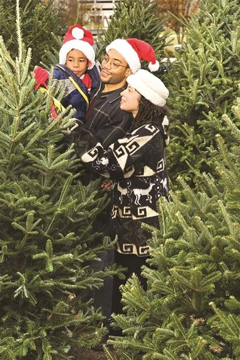 where to find christmas trees in kern county bakersfield