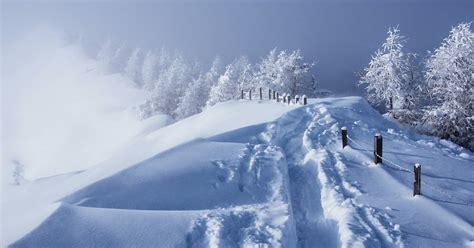 winter foto mit dicken schneedecke hd hintergrundbilder