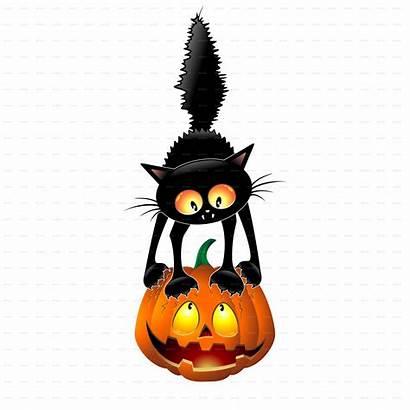 Cartoon Cat Pumpkin Halloween Funny Scared Mouse