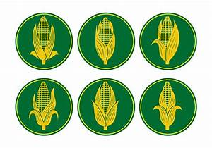 Ear of Corn Vectors - Download Free Vector Art, Stock ...